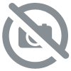 MICRO OUEST